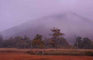 朝霧の中3