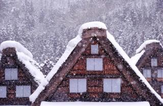 降りしきる雪1