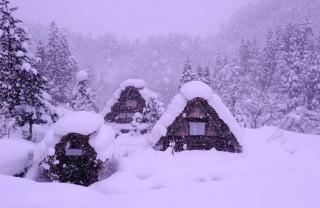 降りしきる雪2