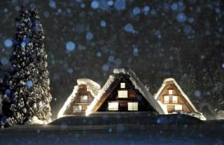 降りしきる雪とライトアップ1